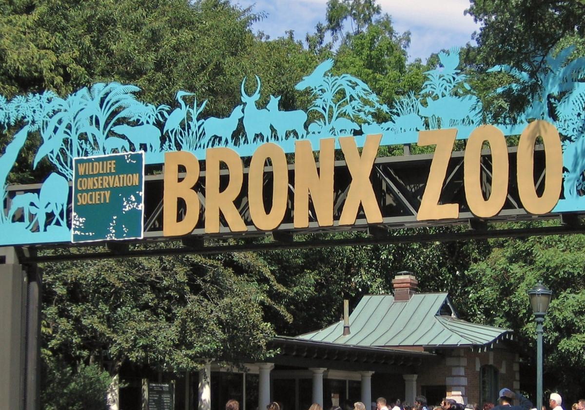 Aquarium Zoo Developer And Operator International Theme Park